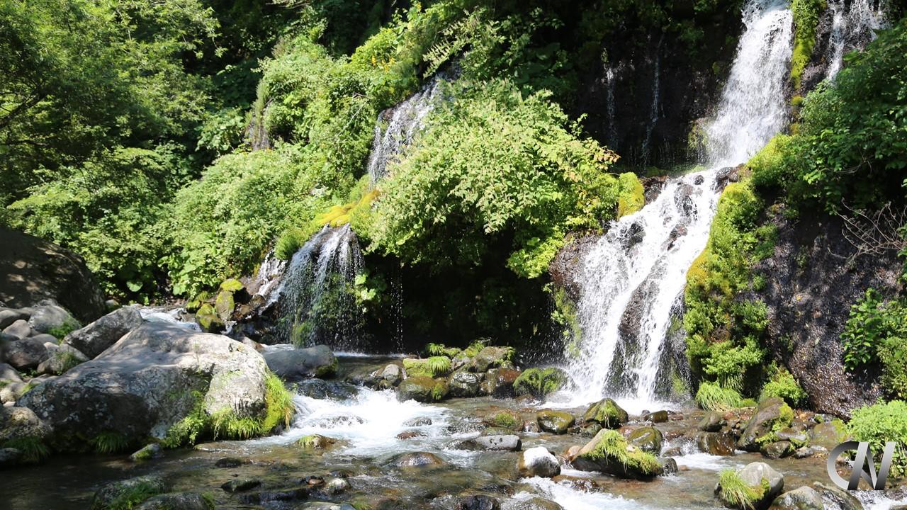 涼しい夏山の滝(だんちゃんロゴ付き)